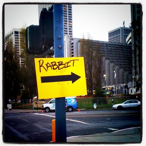Rabbit? Where?
