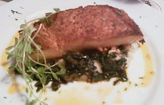 CW Salmon