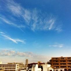 (^o^)ノ < おはよー!  今朝の大阪、いい天気です。