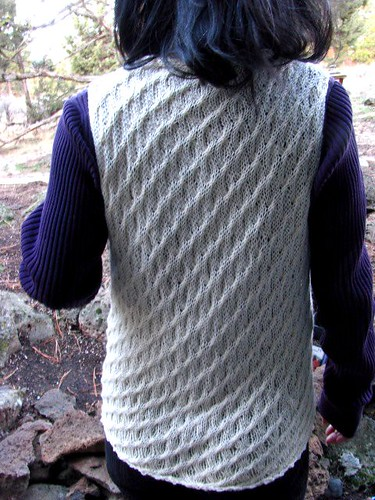 Alsea Vest in Its Natural Element Back Washed