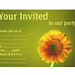 Party Invitation Design - Yellow Daisy Gerbra Flower