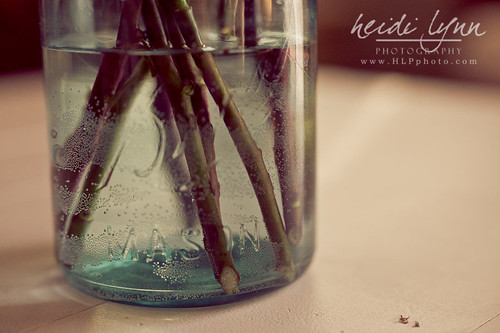Vase 01