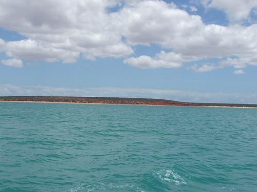 Sailing On Shark Bay 1