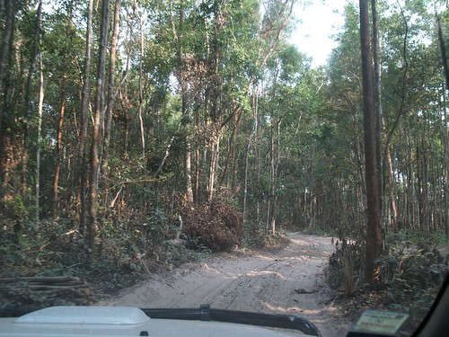 Roads to villages in Atsaphone are impassable by vehicles for 4 months of the year