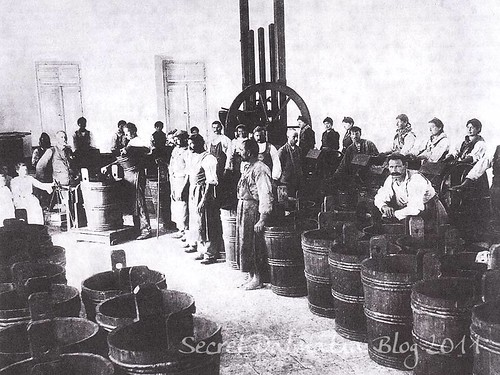 Drioli factory at the beginning of the 20th century