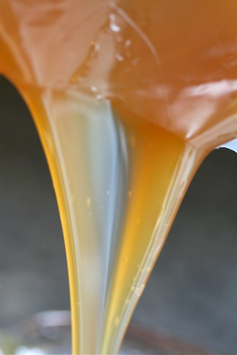 Golden malt syrup