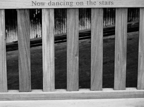 Now Dancing on the Stars