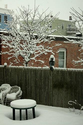 365.57 freaking snow