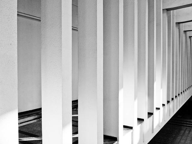 Linii în alb și negru