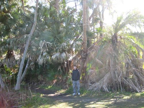 Mead Garden, Winter Park, FL