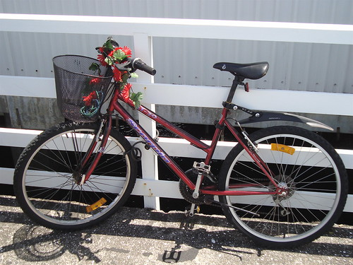 Basket Bike on Devonport Wharf