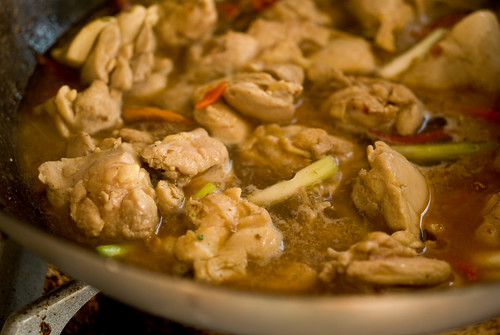 simmering the chicken
