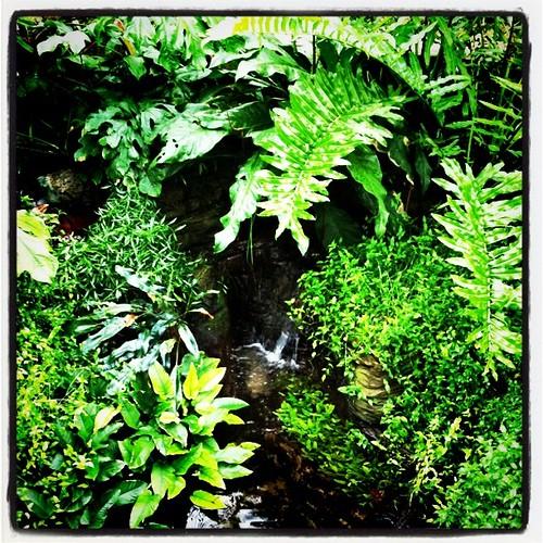 garden time.