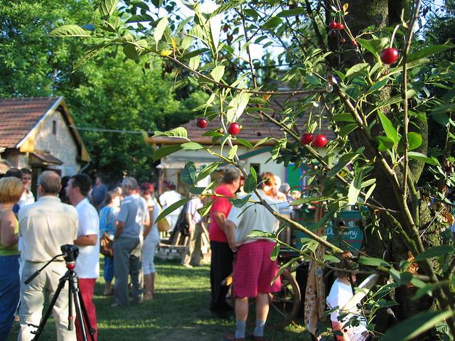 V. Fignár Fesztivál Udvar, Dubicsány 2011 094