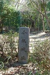 小机城址市民の森(本丸広場)