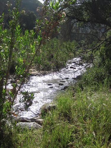 Placerita Canyon - Waterfall - 01
