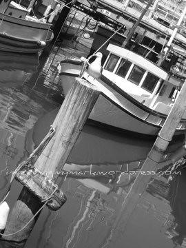 Pier 39 - San Fran