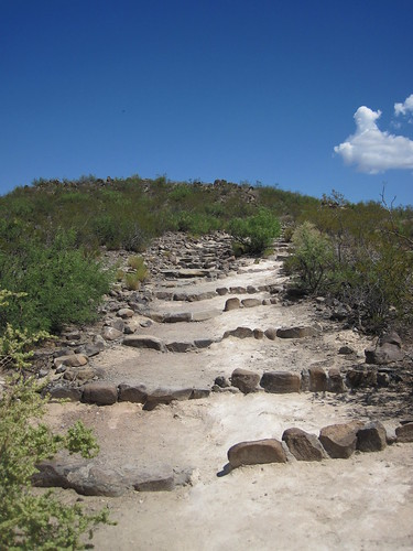 Picture from the Three Rivers Petroglyph Site