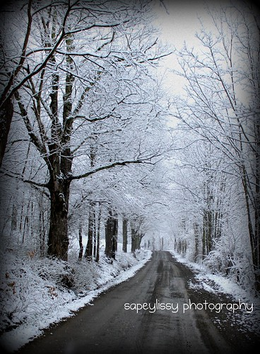 Road to our driveway by sapeylissy (Jamie A. McBride)