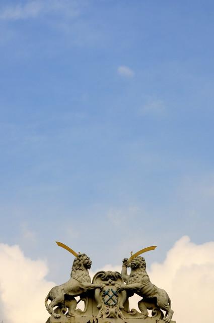 Nubes de león