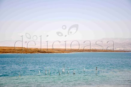 Marea Moarta 2