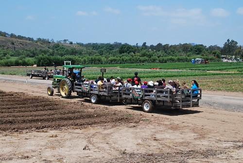 Tanaka Farms: May 2011