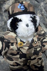 Day 80 - Task Force Member - PFC Buddy