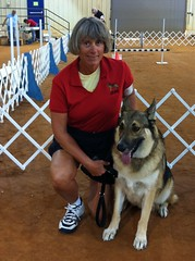 Ginger and Jake at our first Obedience Rally