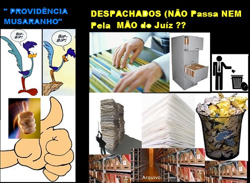 providenciaMusaranho
