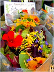 salad greens with edible flowers
