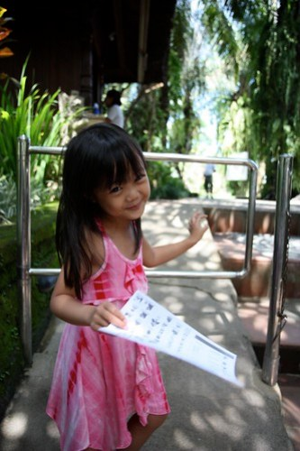 at the Bali Bird Park