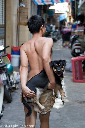 A boy and his dog, near Ben Thanh market