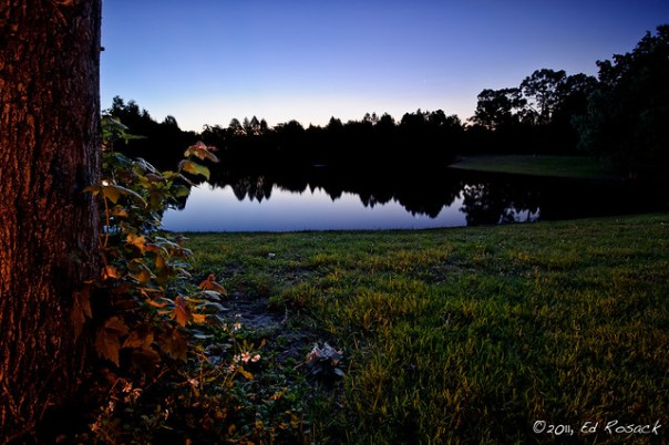 Pre-dawn pond at Greenwood Park