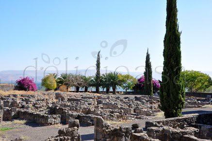 Capernaum (1 of 1)-3