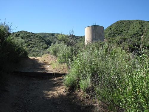 Placerita Canyon Loop 02