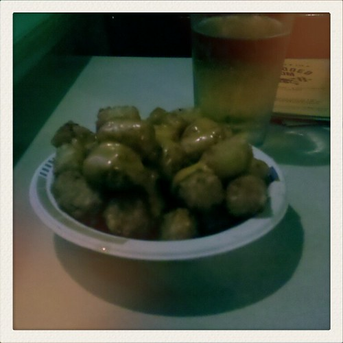 grossest photograph of tater tots ever