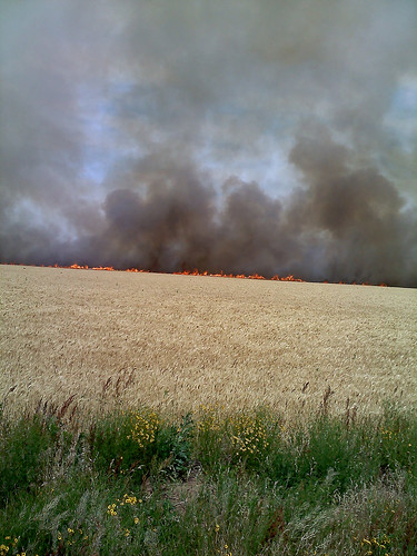 A fire in a wheat field near Cherokee, OK