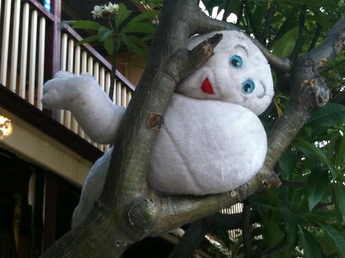 Strange Creature in Fremantle