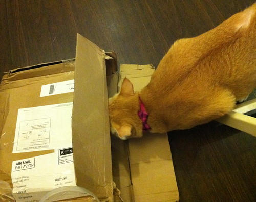 Estee & her box
