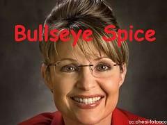 Palin-Bullseye-Spice