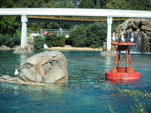 Disneyland! 021
