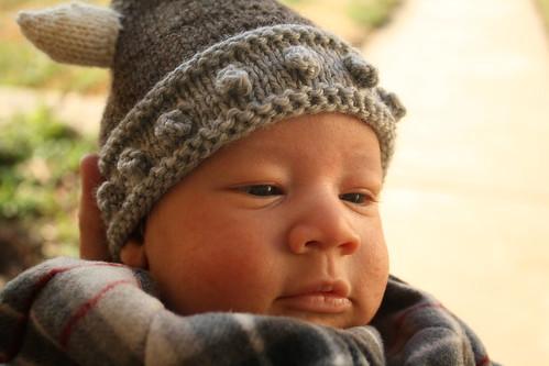 baby viking walter