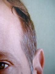 """Bestiole e bestiacce, di David Sedaris, illustrato da Ian Falconer, Mondadori 2011; Art director: Giacomo Callo; Graphic Designer: Manuele Scalia; alla cop.: """"illustrazione di Ian Falconer""""; q. di cop.: """"foto © Hugh Hamrock"""" (part.), 7"""