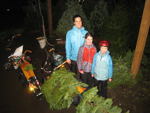 2010 Xtracycle Tree Haulin