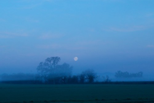Moonset with fog