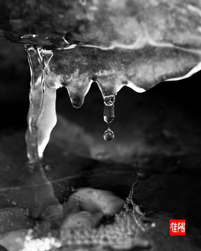 D80-ORF_Frozen02-2010_12-20B