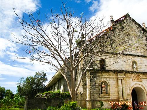 San Joaquin Church in Iloilo  6