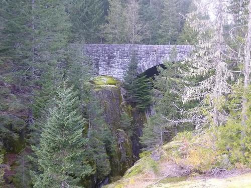 WA  Mt.Rainer 53