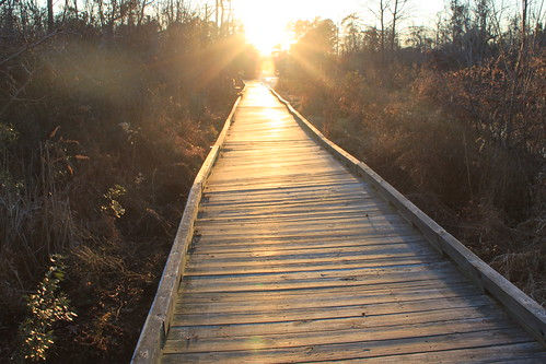 Fenwick Hollowell Wetlands - Walkway and Sunset