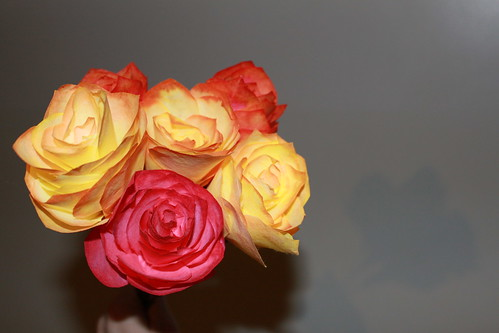 Crafts - Coffee Filter Roses